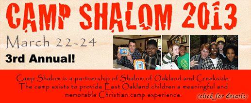 Camp Shalom 2013 Button